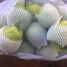 Xốp bọc ổi dạng túi bao trái cây hiệu quả cho nhà nông